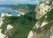 Beer Headland and the leafy walk down to Branscombe